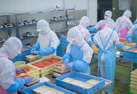 Cuộc đời sang trang mới nhờ đi xuất khẩu lao động Nhật Bản
