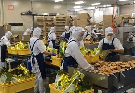 Nhu cầu xuất khẩu lao động Nhật Bản năm 2017 rất cao
